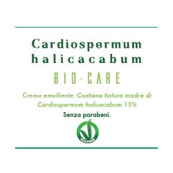 Contiene tintura madre di Cardiospermum halicacabum 15% BIO-CARE OTI - 75 ml